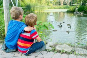 ZOO ECOMUSEUM: les canards!