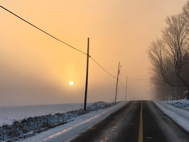 Petit matin brumeux (comme dans ma tête)