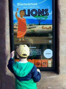 Le Zoo de Granby propose un volet éducatif dans l'habitat des lions